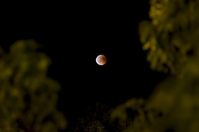 Lunar Eclipse Roma, Night Photography